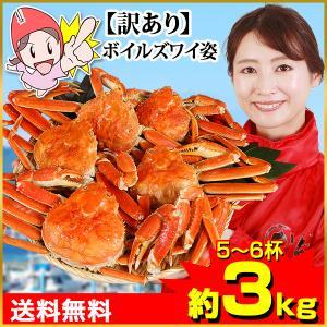かに カニ 蟹 ズワイガニ ボイル| 【訳あり】カナダ産ボイルずわい姿 6杯(約3kg)|笑顔の食卓 匠