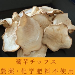 【メール便・送料無料】数量限定!自社製造 菊芋チップス 100g  農薬無散布・無添加|egfarm