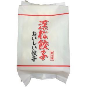 特選はままつ餃子(45個) egiftcenter
