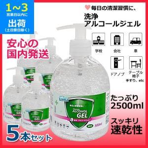 洗浄アルコールジェル (5本セット) 1本500ml スッキリ速乾性 かんたん押すだけポンプタイプ 保湿成分グリセリン配合 国内発送|egmart
