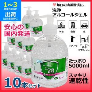 洗浄アルコールジェル (10本セット) 1本500ml スッキリ速乾性 かんたん押すだけポンプタイプ 保湿成分グリセリン配合 国内発送|egmart