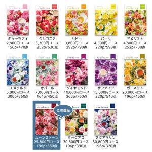 選べるギフトカタログ erabocca エラボッカ ムーンストーン 25,800円(税別)コース egolf 07