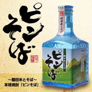 【ミニボトル】 本格焼酎 ピンそば 300ml(おもしろ ゴルフ お酒)(ゴルフコンペ景品 ゴルフコンペ 景品 賞品 コンペ賞品)|egolf