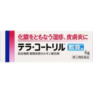 あすつく 【指定第2類医薬品】テラ・コートリル軟膏a 6g