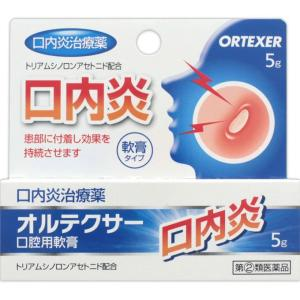 ◆【指定第2類医薬品】オルテクサー口腔用軟膏 5G【セルフメディケーション税制対象商品】|ehac
