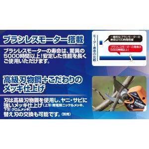 【送料込】ニシガキ 充電式剪定鋏 太丸ハンディ25 (バッテリー・充電器付き) N-928 |ehanshinys|10