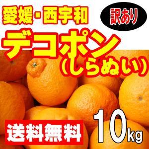 愛媛西宇和産 デコポン(しらぬひ) 訳あり家庭用 送料無料 ...