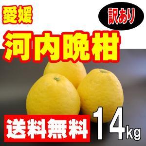 愛媛産 河内晩柑(美生柑 宇和ゴールド ジューシーオレンジ) 訳あり家庭用 14kg 送料無料