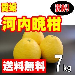 愛媛産 河内晩柑(美生柑 宇和ゴールド ジューシーオレンジ) 訳あり家庭用 7kg 送料無料