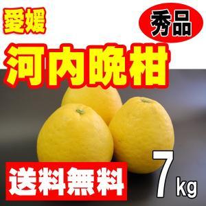 愛媛産 河内晩柑(美生柑 宇和ゴールド ジューシーオレンジ) 秀品 7kg 送料無料