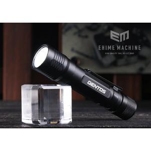 [新掲載商品] GENTOS DM-031B LEDライト 45lm ジェントス|ehimemachine