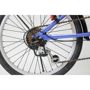 ミムゴ ACTIVE911 FDB206SF ノーパンク20インチ 折畳自転車 6段ギア ブルー MG-G206NF-BL 新品 送料無料 メーカー倉庫より直送|eightloop|10