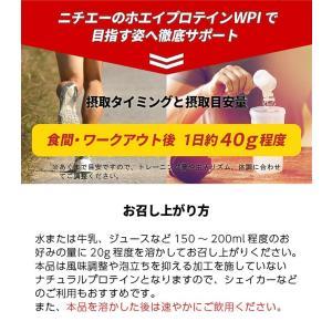 nichie ホエイプロテイン WPI たんぱく質約96%(無水換算) プレーン 3kg