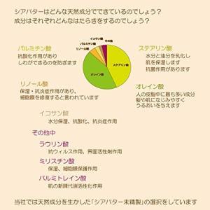 オーガニック フェアトレード未精製シアバター100% 50g 日本製 エコサート認証 Shia