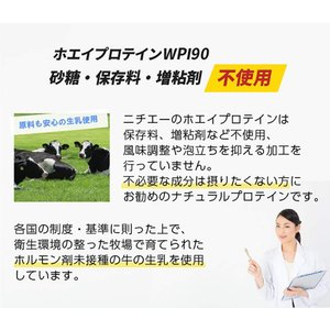 nichie ホエイプロテイン WPI90 たんぱく質約90%(無水換算) プレーン 100g
