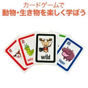 英語教材 Bigger Than Card Game ビッガーザンカードゲーム 動物単語 英単語 カードゲーム eigoden