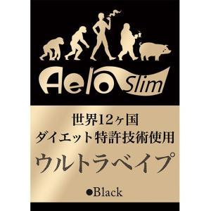 エアロスリム AeroSlim 本体 黒(バッテリー)Brack ブラック