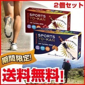 井村屋 スポーツようかん 2種セット あずき&カカオ
