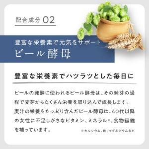 エクオール + ラクトビオン酸 90粒 3個セット 正規販売店|eisin1|08