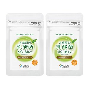 [ ns乳酸菌 / 発酵 / 乳酸菌 / サプリ / サプリメント / 腸内フローラ / ラクトバチ...