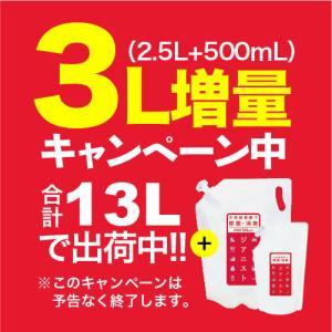 次亜塩素酸水 ジアニスト 2500mL×4袋 選べる10L 500ppm|eisin1|02
