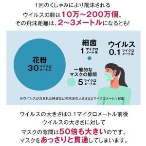 次亜塩素酸水対応噴霧器セット 高濃度500ppm  20Lジアニスト パーフェクトセ ット|eisin1|05