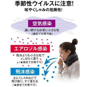 次亜塩素酸水対応噴霧器セット 高濃度500ppm  20Lジアニスト パーフェクトセ ット|eisin1|07
