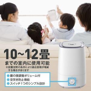 次亜塩素酸水対応噴霧器あり 次亜塩素酸 500ppm ジアニスト  20L 2個特別セット|eisin1|03