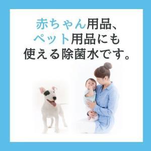 除菌スプレー インフルエンザやノロウイルスにマスク付き30L eisin1 02