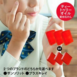 AHA(グリコール酸) 1.0% 【ピーリング作用を持つ洗顔石鹸】 [メール便]  <脂性肌、ニキビ...