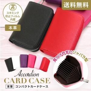 カードケース 大容量 じゃばら/Y-CARD-ACD/(B6...