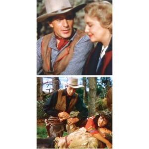 西部劇 DVD 「北西騎馬警官隊」