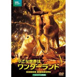 小さな世界はワンダーランド TVオリジナル完全版 DVD 2枚組