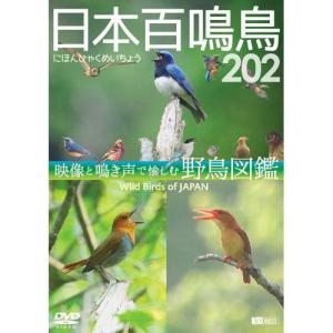 日本百鳴鳥202