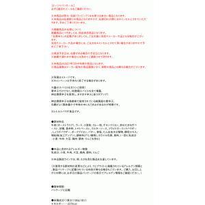 グリコ ビーフカレーLEE辛さ×30倍【イージャパンモール】 ejapan 02