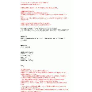 サンガリア はじけてメロンソーダ 350g缶【イージャパンモール】|ejapan|02