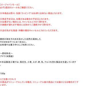 モリウエ レーズン 100g【イージャパンモール】|ejapan|02