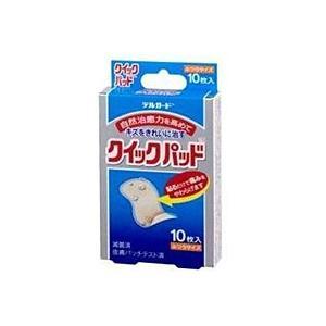 阿蘇製薬 デルガード クイックパッド ふつうサイズ (10枚入)【イージャパンモール】|ejapan