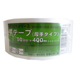平テープ厚手【ホームセンター・DIY館】|ejapan
