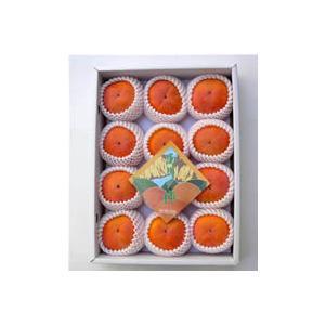 上田さんちのとっても甘い「湯川の富有柿」2Lサイズ12個(約4キロ)11月中旬頃より順次発送【逸品館】【同梱不可】|ejapan