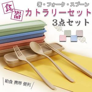 カトラリーセット 箸 フォーク スプーン 3点セット ケース付き コンパクト ランチスプーン 箸 お弁当 給食 食器 おしゃれ 携帯 便利|ejej-shopping