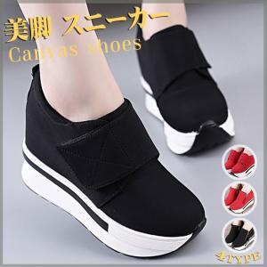 レディースファッション シューズ 靴 スニーカー ローカット...