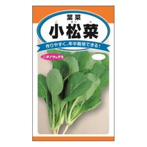 日農 小松菜 メール便対応(10個まで) 4960599100504