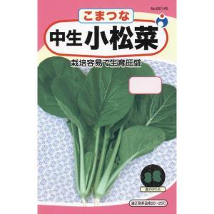 ウタネ 中生小松菜 メール便対応(10個まで) 4962484061457