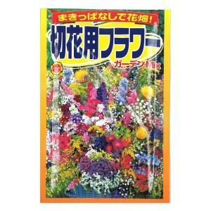 アタリヤ 切花用フラワー ガーデンミックス メール便対応(16個まで) 4971374525412