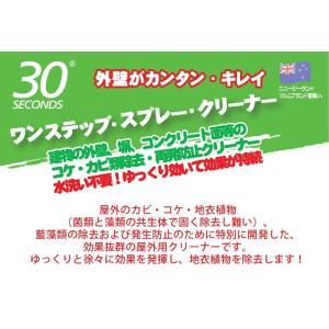 30セカンズ ワンステップ・スプレー・クリーナー 2L  (苔 除去 コンクリート クリーナー 除草剤 苔落とし)|ejoy|02