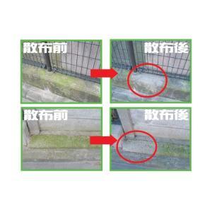 30セカンズ ワンステップ・スプレー・クリーナー 2L  (苔 除去 コンクリート クリーナー 除草剤 苔落とし)|ejoy|03
