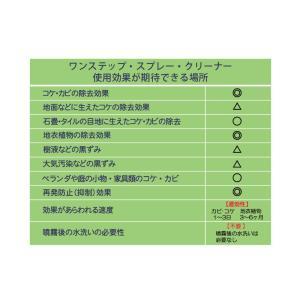 30セカンズ ワンステップ・スプレー・クリーナー 2L  (苔 除去 コンクリート クリーナー 除草剤 苔落とし)|ejoy|04