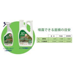 30セカンズ ワンステップ・スプレー・クリーナー 2L  (苔 除去 コンクリート クリーナー 除草剤 苔落とし)|ejoy|05