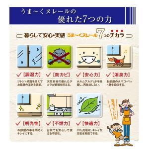 うま〜くヌレール18Kg 仕上げ用/カラー選択 うまーくヌレール漆喰 初心者 日本プラスター|ejoy|05